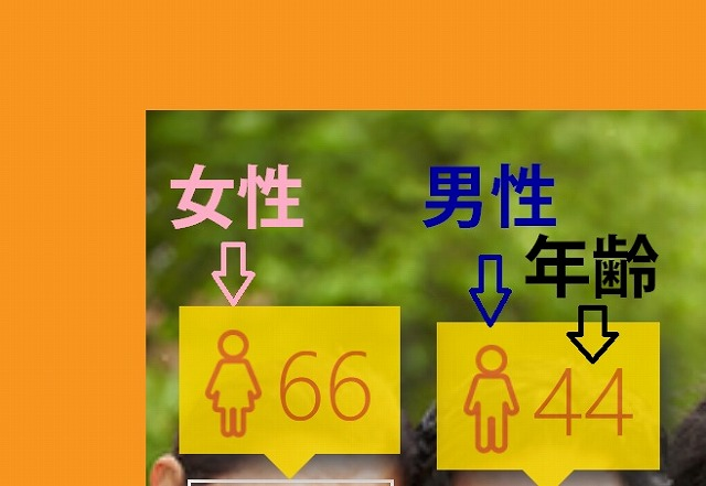 How Old 仕様
