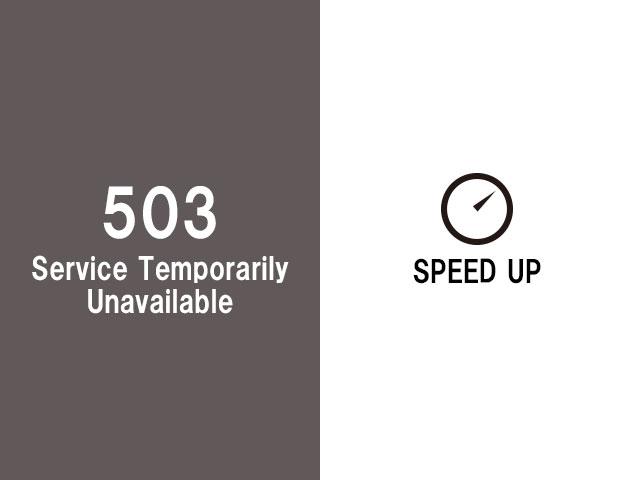 503エラー対策と高速化