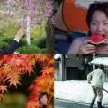 【2014年】「たむら」にとって今年はどんな年でしたか?