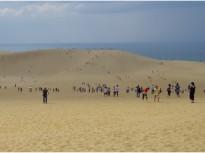 鳥取市が誇る鳥取砂丘
