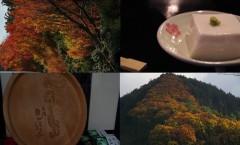 和歌山の紅葉とごまとうふ
